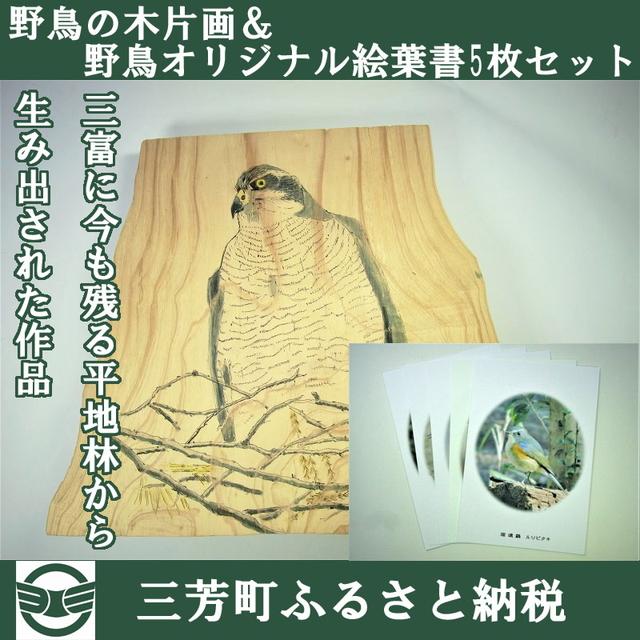 【ふるさと納税】野鳥の木片画&野鳥オリジナル絵葉書5枚セット