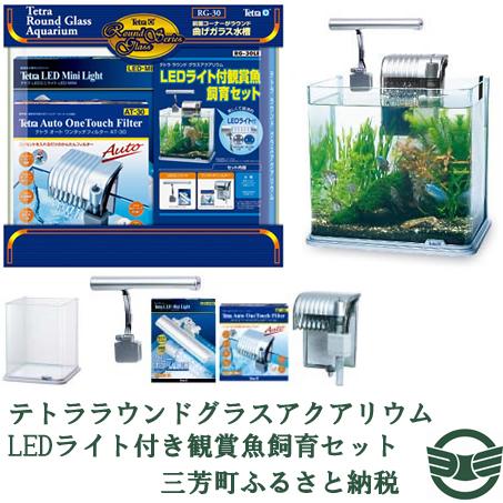 【ふるさと納税】テトララウンドグラスアクアリウム LEDライト付き観賞魚飼育セット