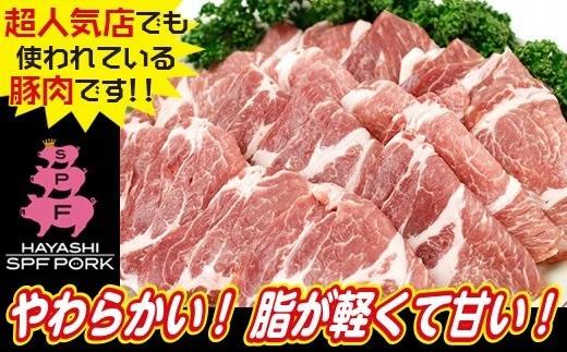 林SPF豚 未使用品 肉質はキメ細かでやわらかく 脂が軽くて甘いのが特徴です ひと口食べれば きっとその味の虜に 豚肩ロース 全国どこでも送料無料 ふるさと納税 林SPF 生姜焼き用900g 綱島養豚場
