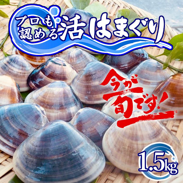 千葉県いすみ市 【ふるさと納税】 訳あり はまぐり ハマグリ 蛤 国産...