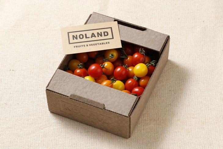 【ふるさと納税】10-3 NOLAND 栄町産ミニトマト3種1kg(ギフトボックス入り)×2箱