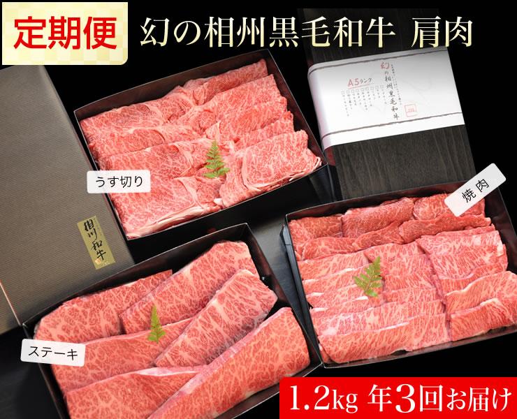 【ふるさと納税】牛肉 定期便 3回 幻の相州黒毛和牛肩肉 1.2kg×3回 計3.6kg【 相州牛 相州和牛 神奈川県 小田原市 】