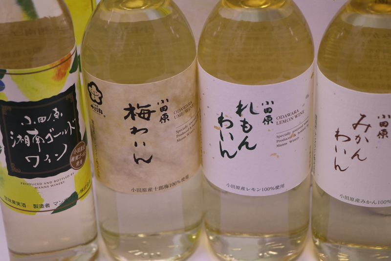 【ふるさと納税】城下町小田原の飲み比べわいんDセット(4本セット)