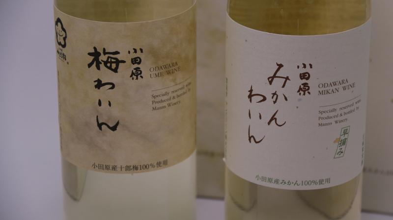 新品 送料無料 小田原名産の梅 みかんから作ったワイン ふるさと納税 並行輸入品 城下町小田原の飲み比べわいんBセット 2本セット