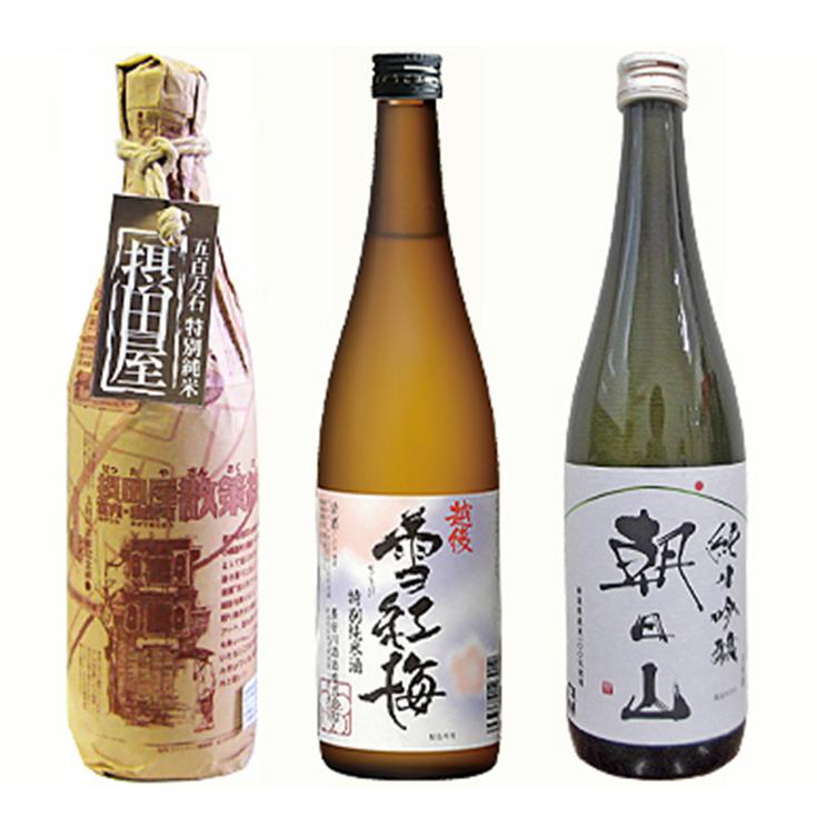 【ふるさと納税】95-17純米飲み比べ3本セット