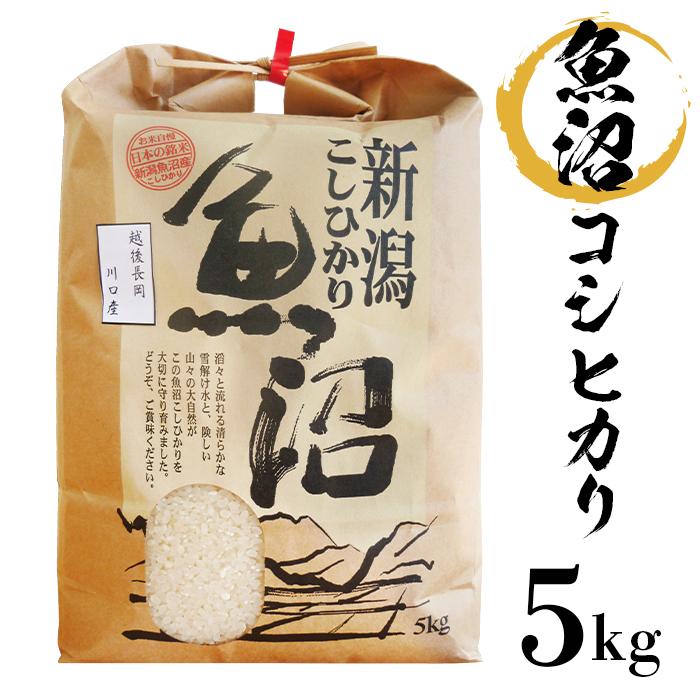 新潟県長岡市 【ふるさと納税】米 5kg 白米 コシヒカリ 魚沼 令...