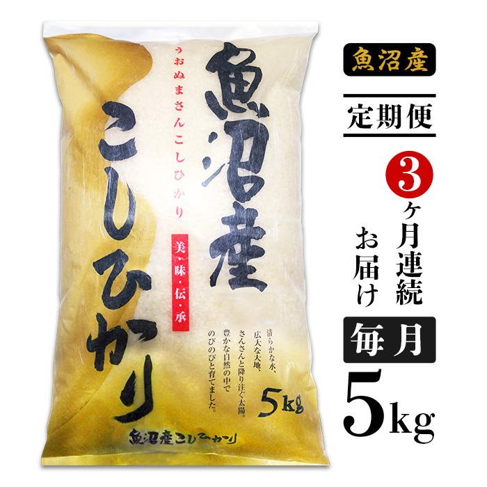 【ふるさと納税】米 定期便 5kg 白米 コシヒカリ 魚沼 令和2年 新米 C2-053【3ヶ月連続お届け】