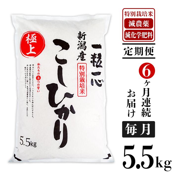 【ふるさと納税】48-5H6【6ヶ月連続お届け】新潟県長岡産特別栽培米コシヒカリ5.5kg
