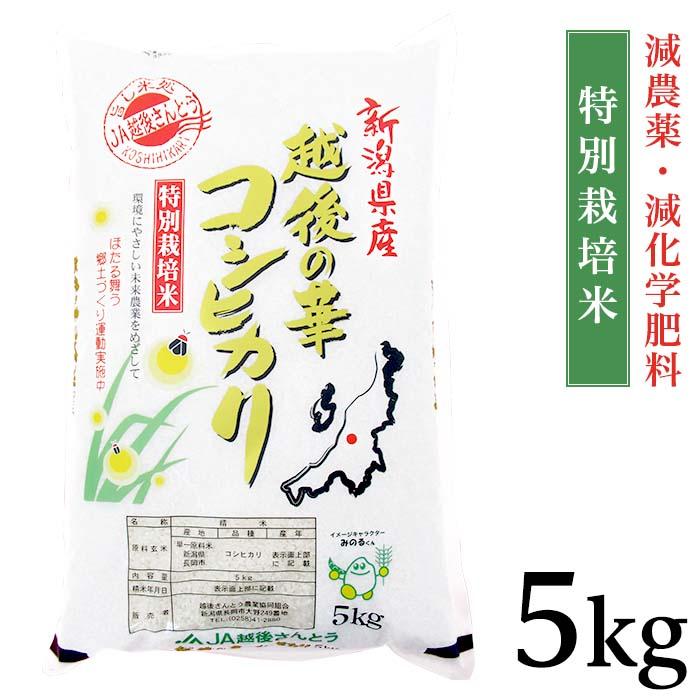【ふるさと納税】B8-01新潟県長岡産コシヒカリ(越路地域)5kg