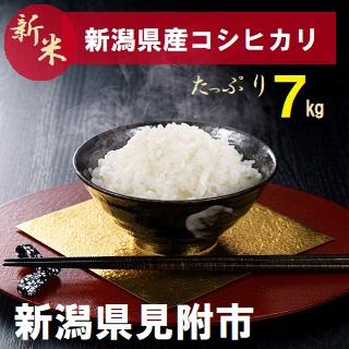 【ふるさと納税】新潟 県 見附市産 新米 コシヒカリ 7kg 精米 送料無料