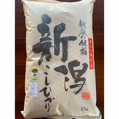 【ふるさと納税】矢代産コシヒカリ10kg