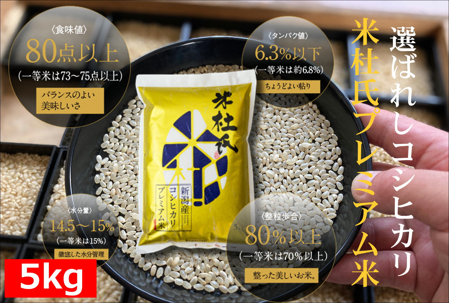 プレミアム米 有名な ふるさと納税 新潟県阿賀野市産 中野家15代目 米杜氏 コシヒカリ 5kg 付与