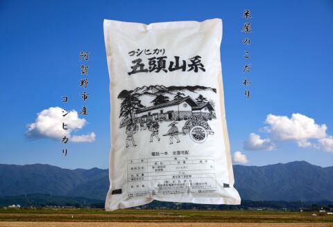 ふるさと納税 新米予約 米屋のこだわり阿賀野市産 商品 5kg コシヒカリ セール