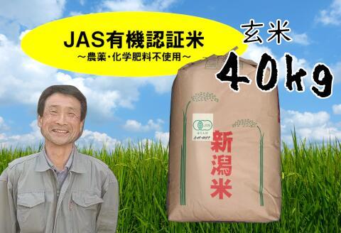 JAS 有機認証米 農薬未使用 サービス 化学肥料 不使用 ふるさと納税 超歓迎された 玄米 40kg コシヒカリ 新米予約
