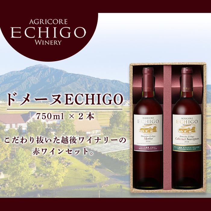 新潟県南魚沼市 【ふるさと納税】ドメーヌECHIGO 赤ワイン2本セット
