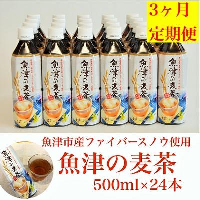 富山県魚津市 ふるさと納税 ランキングTOP5 3ヶ月定期便 魚津の麦茶500ml×24本 開店記念セール お茶 飲料類 定期便 魚津産六条大麦と北アルプスの水で作りました