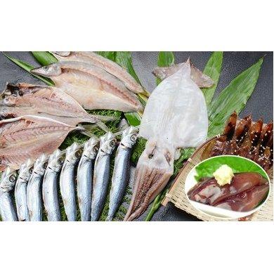 【ふるさと納税】氷見の定置網でとれた干物とほたるいか珍味食べきりセット 【魚貝類・干物】
