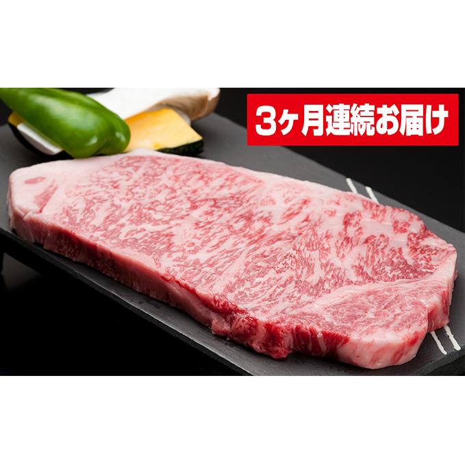 富山県氷見市 新商品 ふるさと納税 氷見牛 送料込 3ヶ月連続お届け 定期便 牛肉 お肉
