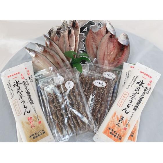 割引 富山県氷見市 ふるさと納税 氷見糸うどん入り 氷見干物セット 大 魚貝類 麺類 至上 干物 するめいか 手延べうどん うどん