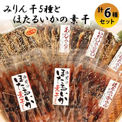 富山県氷見市 ふるさと納税 氷見 保障 堀与氷見名産 みりん干5種とほたるいかの素干セット アジ ししゃも イワシ 干物 シシャモ [宅送] 魚貝類