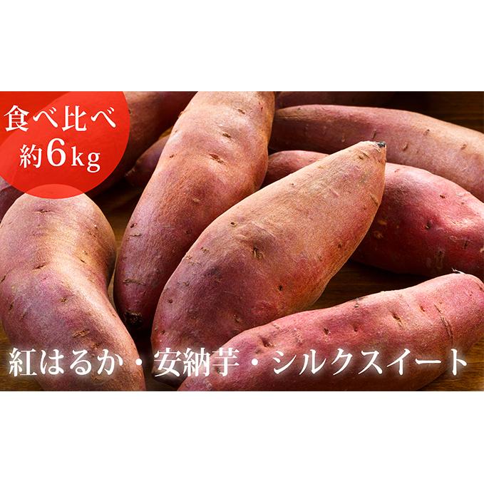 【富山県氷見市】 【ふるさと納税】サツマイモ(紅はるか、安納芋、シルクスイート)約6kg 【野菜・サツマイモ・さつまいも】 お届け:2020年2月29日まで