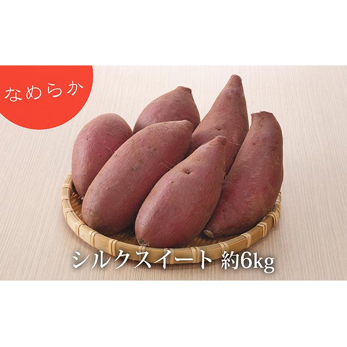 【ふるさと納税】サツマイモ(しっとり!シルクスイート)約6kg 【野菜・サツマイモ・さつまいも】 お届け:2020年5月31日まで