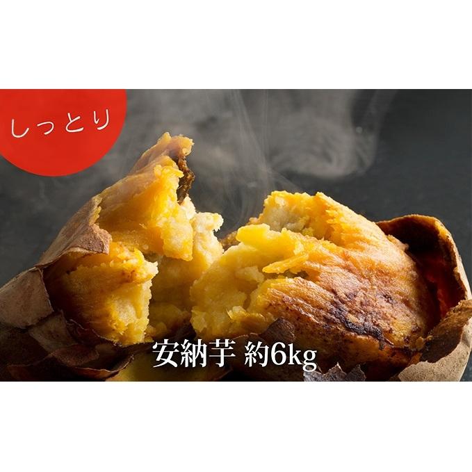 【富山県氷見市】 【ふるさと納税】サツマイモ(しっとり!安納芋)約6kg 【野菜・サツマイモ・さつまいも】 お届け:2020年5月31日まで