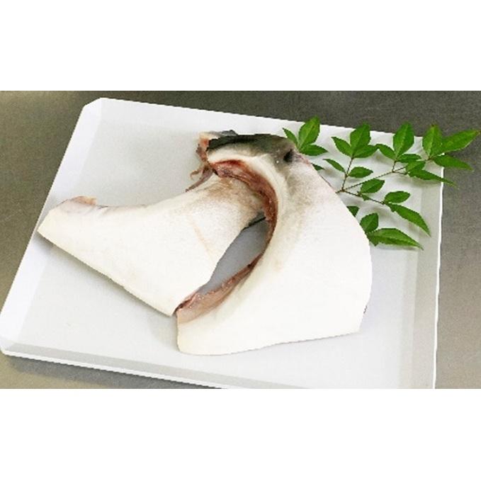 【ふるさと納税】氷見産寒ぶり 鰤カマ2個 【魚介類・魚貝類・加工食品】 お届け:2020年1月上旬~2月末まで