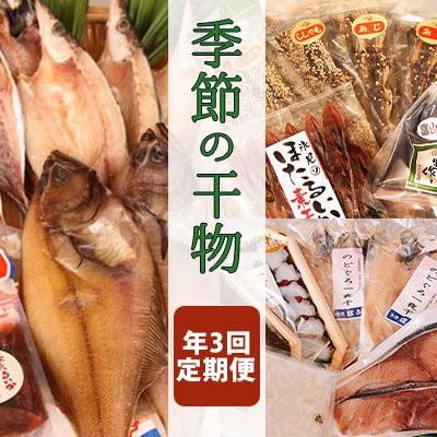 富山県氷見市 最新アイテム ふるさと納税 氷見堀与 年3回定期便 季節の干物 のどぐろ 白えび アジ 魚貝類 定期便 干物 お求めやすく価格改定 ほたるいか入 ほたるいか 加工食品