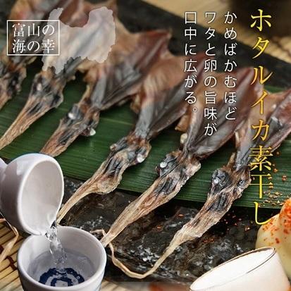 【ふるさと納税】越中氷見屋 ホタルイカ 素干し 18尾入り × 5袋 【魚貝類・加工食品・イカ・ホタルイカ】