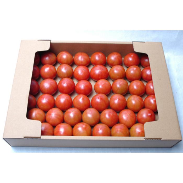 【ふるさと納税】[C2]フルーツトマト(深層水トマト)6kg(約3kg×2回)