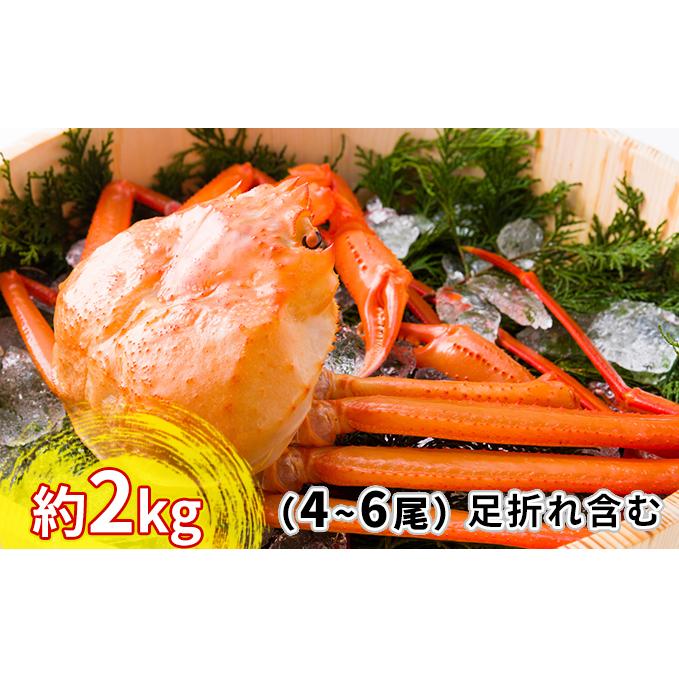 富山県射水市 ふるさと納税 今ダケ送料無料 紅ズワイガニ約2kg [並行輸入品] 4~6尾 棚辺水産 ずわい蟹 お届け:2021年9月4日から2022年3月31日 ズワイガニ ずわいガニ