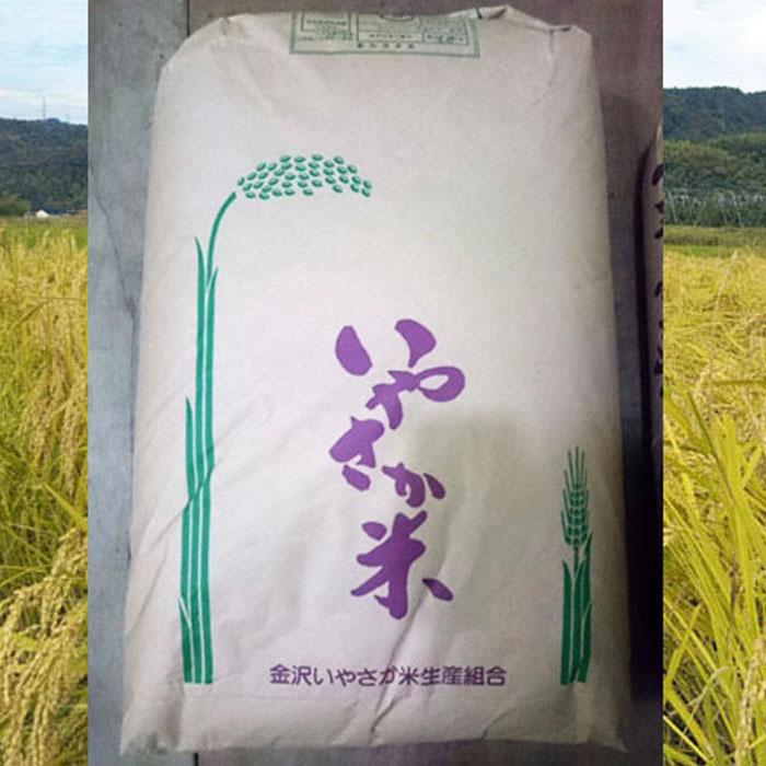 全品送料無料 金沢市 ふるさと納税 中井農産 金沢いやさか米 精米 コシヒカリ 10%OFF 30kg