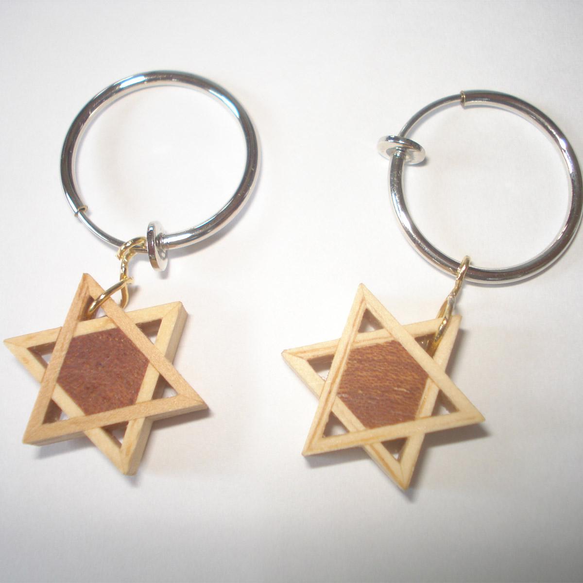 【ふるさと納税】建具の組子で作った星形のイヤリングですヘキサグラム イヤリング20mm プレゼント ギフト 女性 六芒星 木製 ケヤキ 個性的