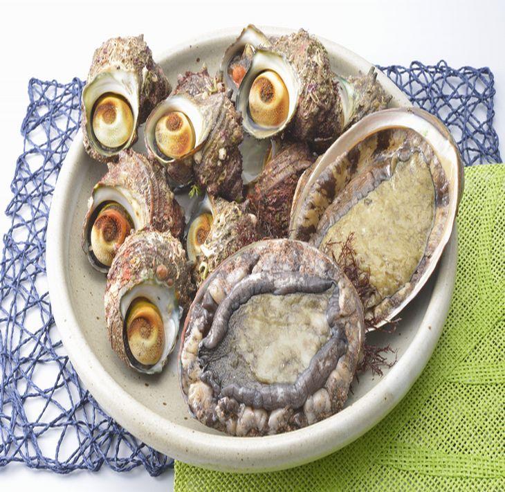 【ふるさと納税】能登 朝どれアワビ・サザエセット(大アワビ2ヶ/サザエ10ヶ) 刺身 つぼ焼き 貝