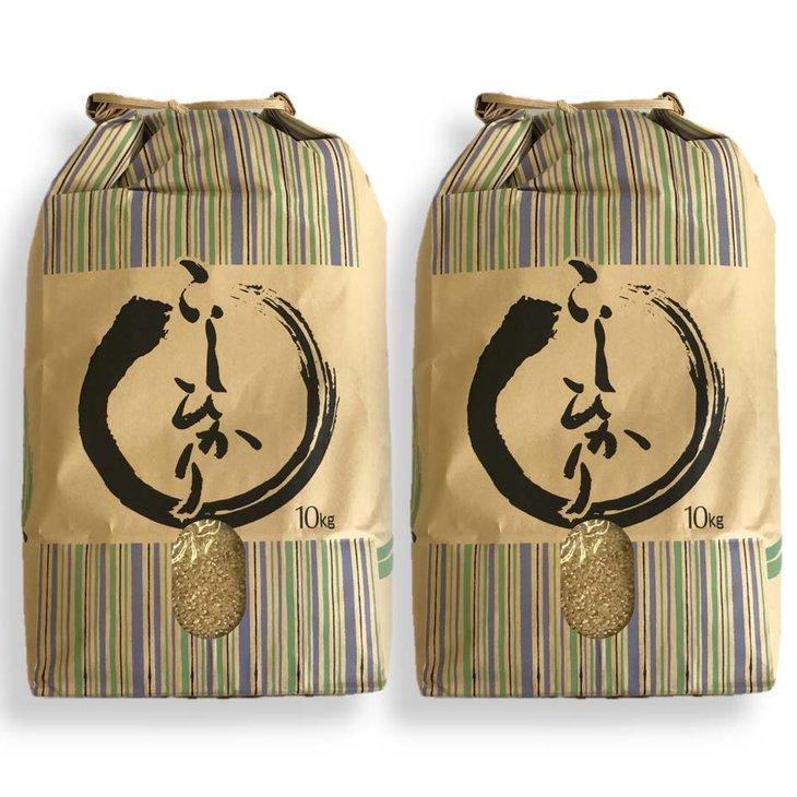 【ふるさと納税】【令和元年産】七尾産コシヒカリ 玄米20kg(10Kg×2袋)