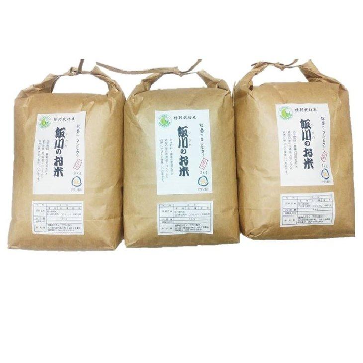 【ふるさと納税】【令和元年産】能登のコシヒカリ 飯川のお米 9kg(玄米3kg×3袋)特別栽培米 ※10 月15日~3月31日に発送予定