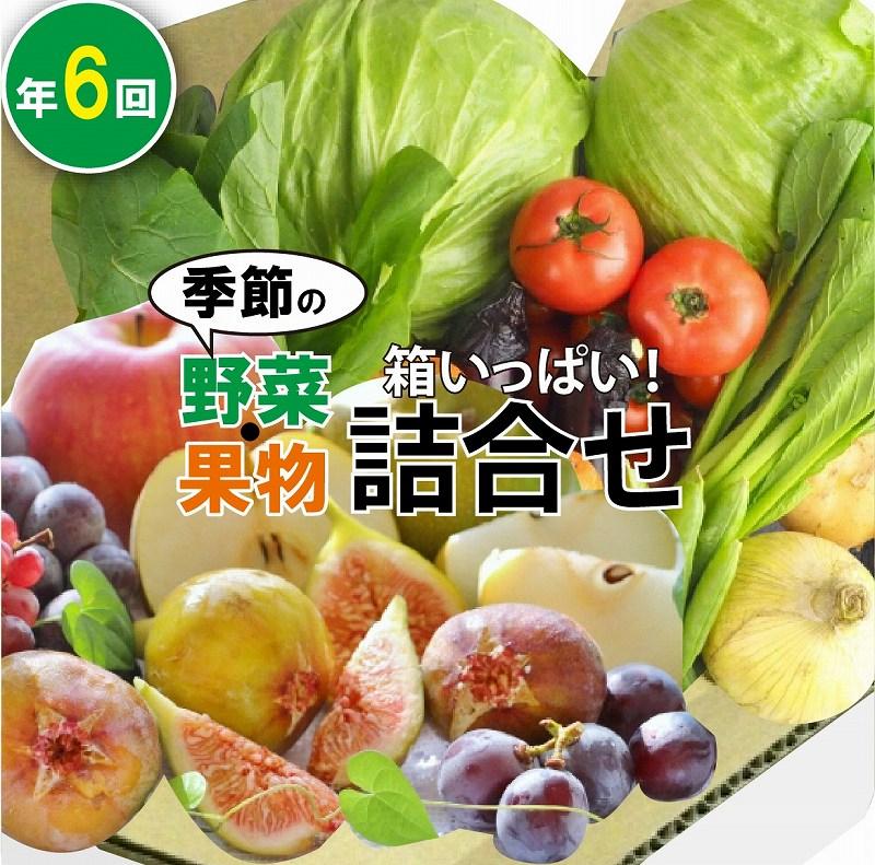 【ふるさと納税】100006. 季節の野菜・果物詰合せ(年6回)