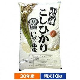 【ふるさと納税】014008. 小松産こしひかり 精米10kg