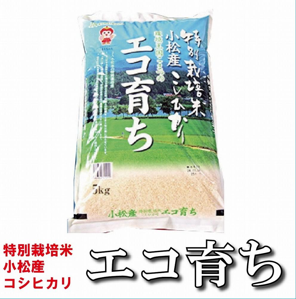 【ふるさと納税】010014. エコ育ち精米5kg