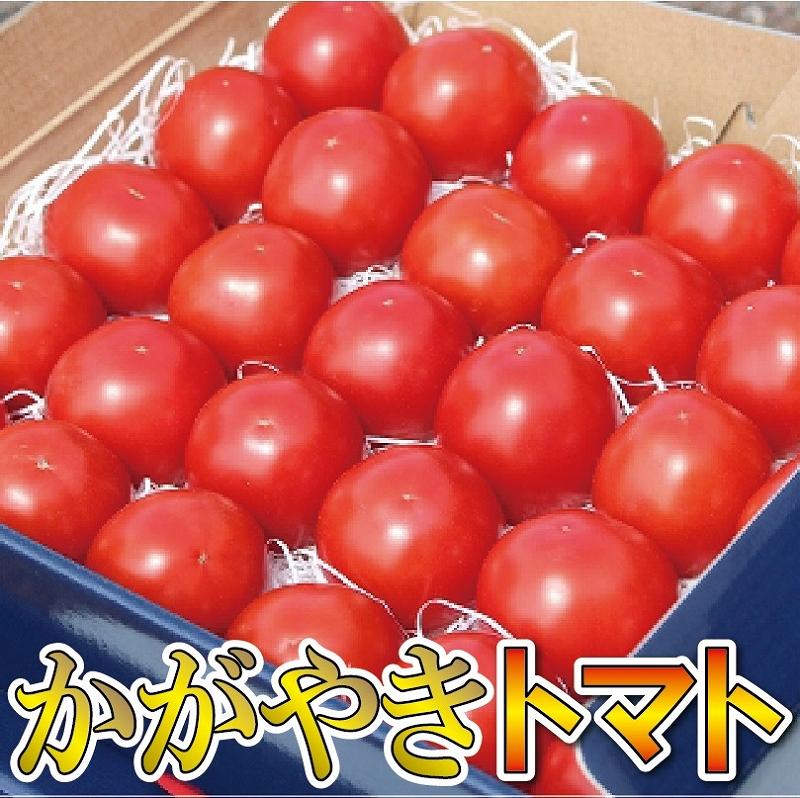 【ふるさと納税】014002. 本田農園のかがやきトマト 2箱(約70個)