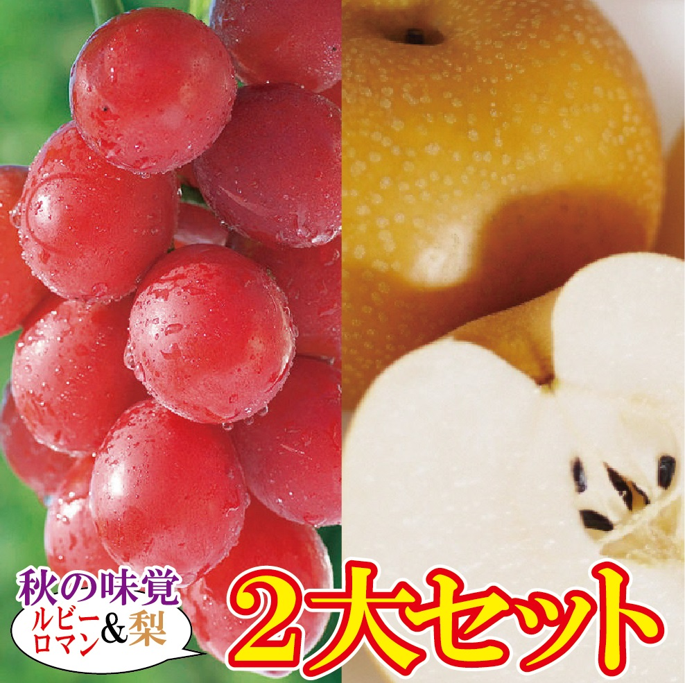 【ふるさと納税】030010. ルビーロマン&梨セット