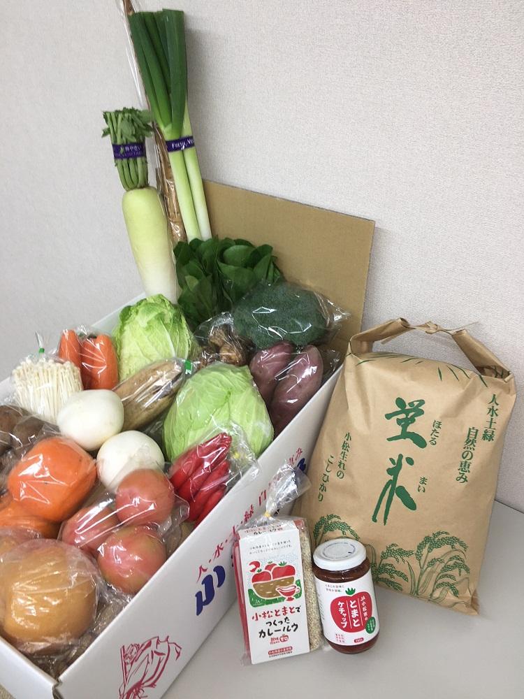 【ふるさと納税】030052. 小松野菜とカレーのセット