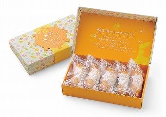 【ふるさと納税】輪島 海からのフィナンシェ(5箱セット)