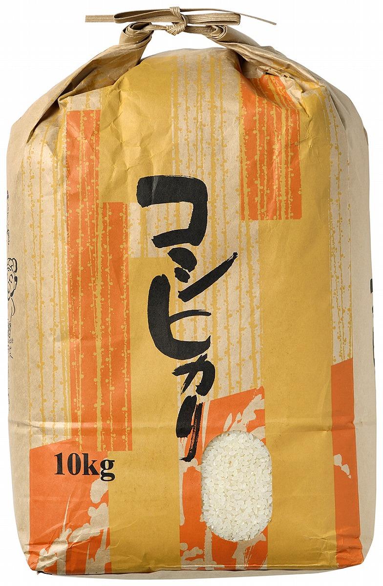 【ふるさと納税】【輪島のお米】町野町産コシヒカリ10kg(精米)