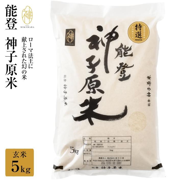 【ふるさと納税】[A095] 【令和元年産】能登神子原米 5kg(玄米)