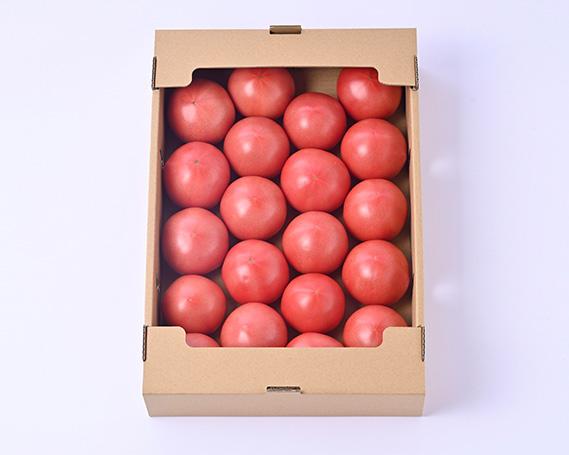 【ふるさと納税】No.066 志宝トマト / 野菜 とまと 低農薬 新鮮 石川県