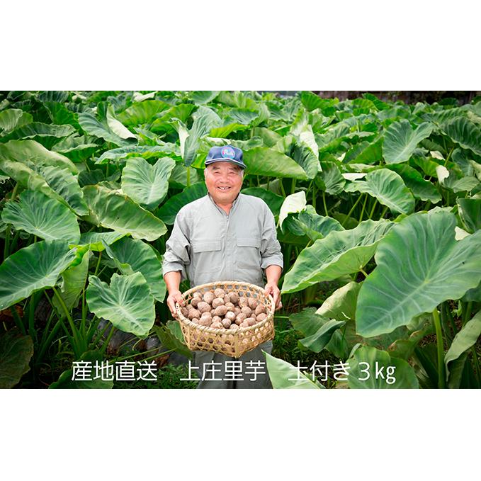 【ふるさと納税】農家直送 上庄里芋 土付き 3kg 【野菜】 お届け:2019年12月1日~2020年2月29日
