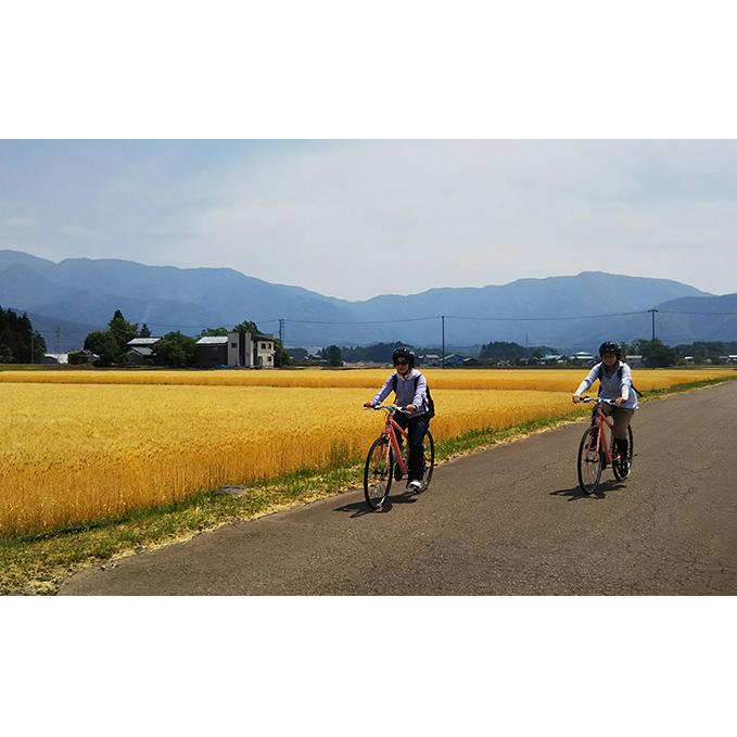 【ふるさと納税】寄り道も楽しい!大野盆地サイクリング体験 2名様分 【体験チケット】