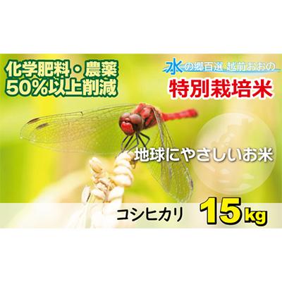 【ふるさと納税】名水のまち越前おおの産「特別栽培コシヒカリ」15kg 【お米・コシヒカリ】